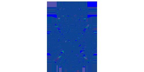 Logo Cuerpo Nacional de Policía