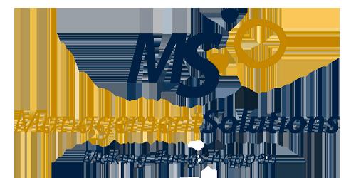 Logo MS, Management Solutions